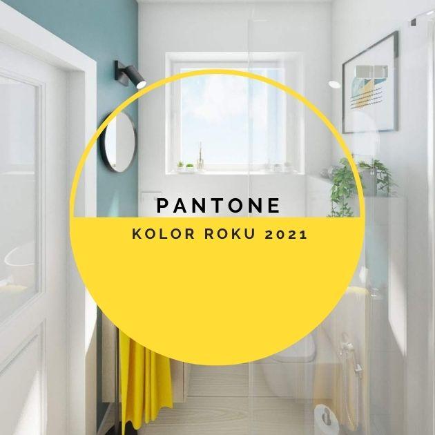 Pantone – Kolor roku 2021